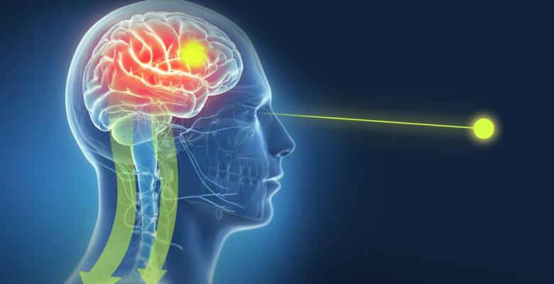 brainspotting therapie